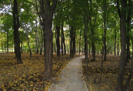Большой и Малый Петровские парки
